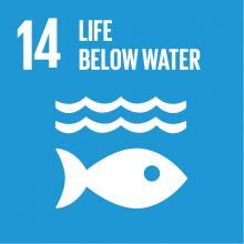 14. Below water